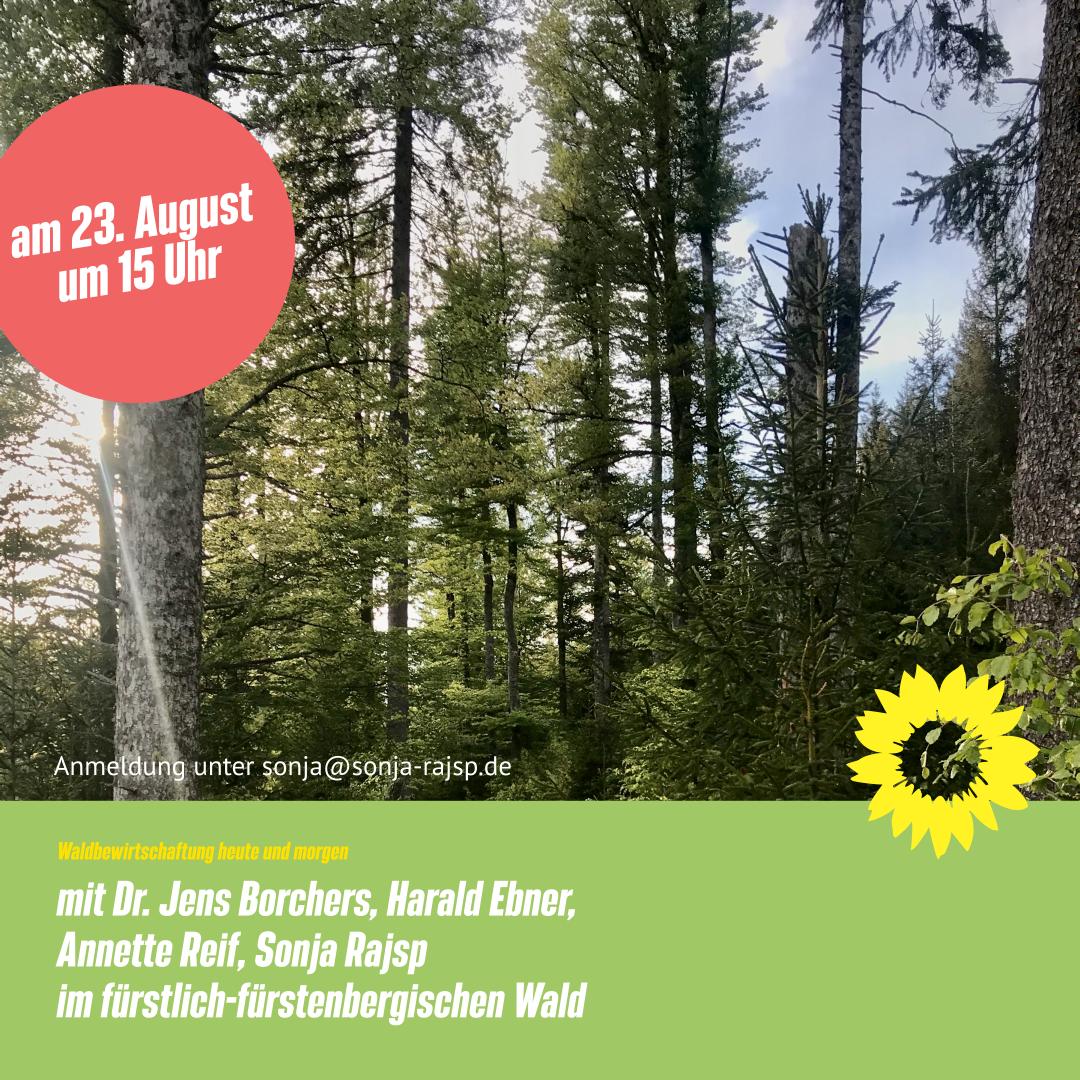 Herzliche Einladung zur Waldbegehung!